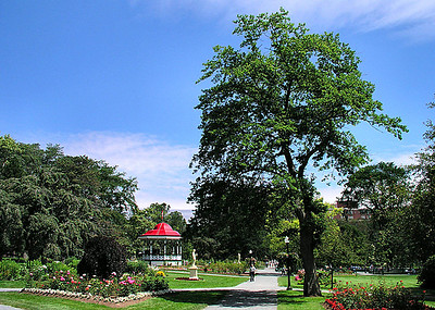 13 Afternoon Public Gardens